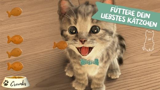 520x293bb Kleines Kätzchen - meine Lieblingskatze als gratis iOS App der Woche Apple Entertainment Games Software Technology