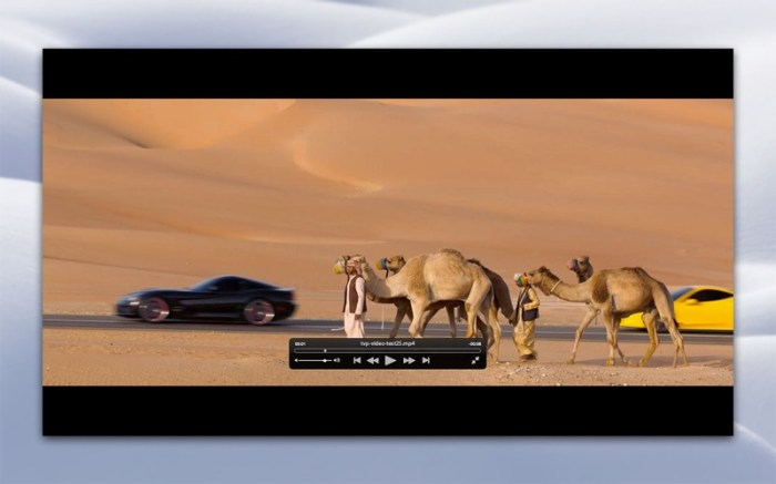 Total Video Player Screenshot 04 9wcgnmn