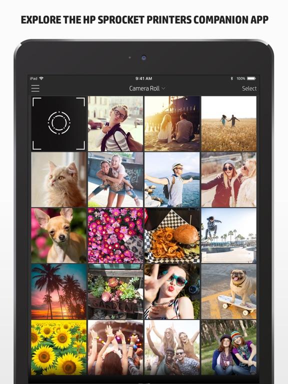 576x768bb HP Sprocket - der Fotodrucker für unterwegs im Test Foto Gadgets Reviews Software Technology Testberichte
