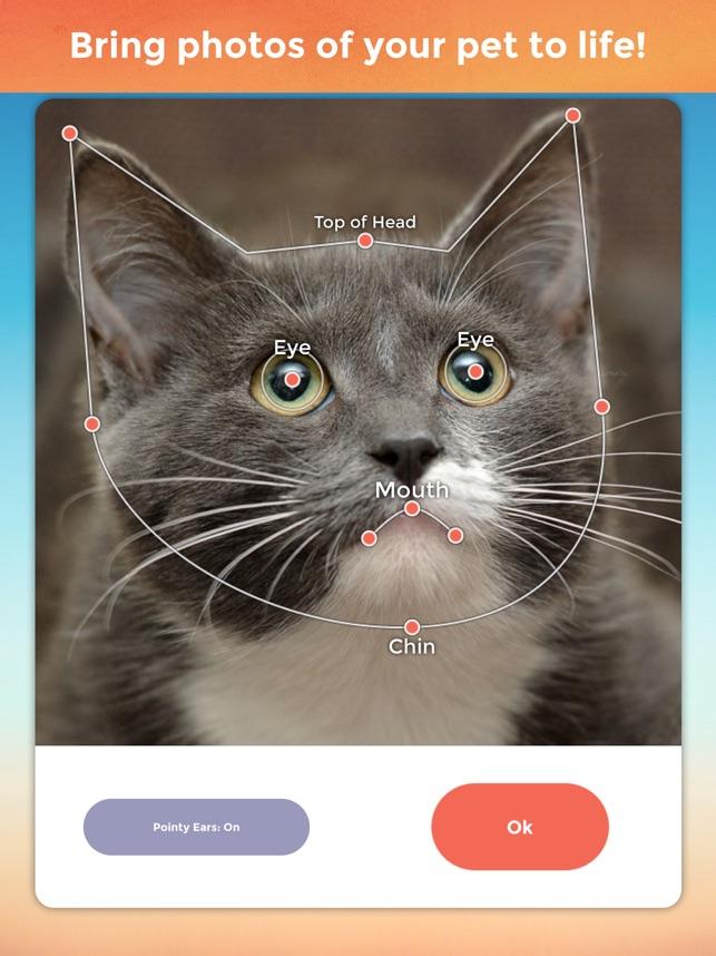 Mi Mascota Habla Pro Screenshot