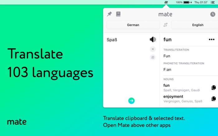1_Mate_Translate_–_translator.jpg