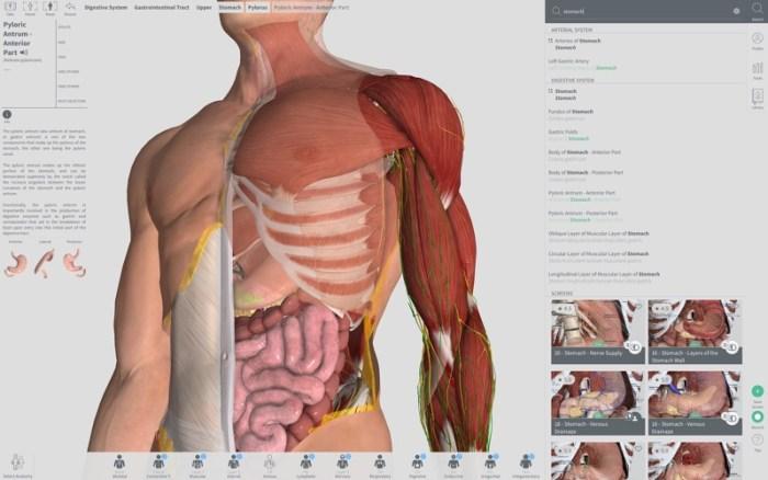 2_Complete_Anatomy_2018_Courses.jpg