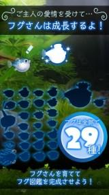 ぼくのフグさん水族館 【無料でかわいい癒し系育成ゲーム】紹介画像4