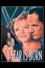 William A. Wellman - A Star is Born (1937)  artwork