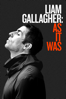 Charlie Lightening - Liam Gallagher: As It Was  artwork