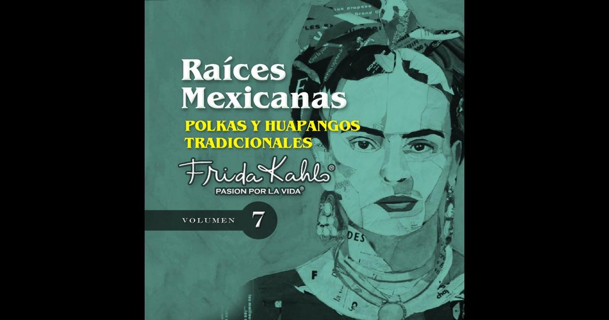Polkas Y Huapangos Tradicionales (raices Mexicanas Vol 7
