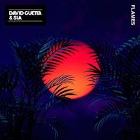David Guetta & Sia - Flames artwork