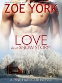 Zoe York - Love in a Snow Storm  artwork