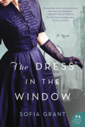 The Dress in the Window Download