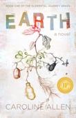 Caroline Allen - Earth  artwork