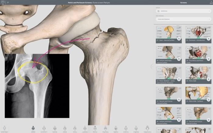 4_Complete_Anatomy_2018_Courses.jpg