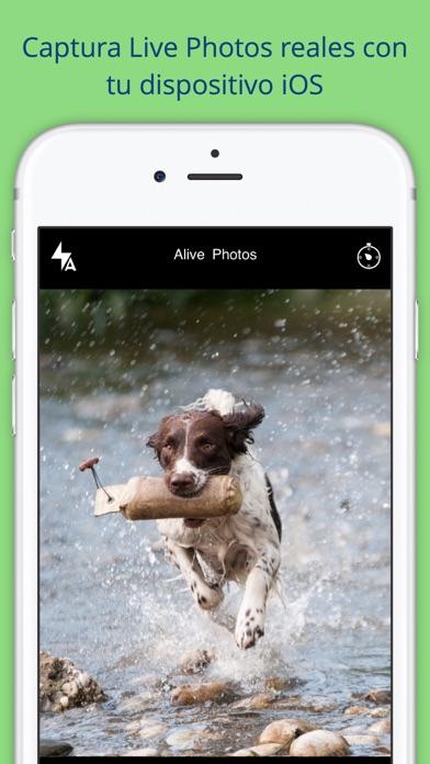 Alive Photos Screenshot