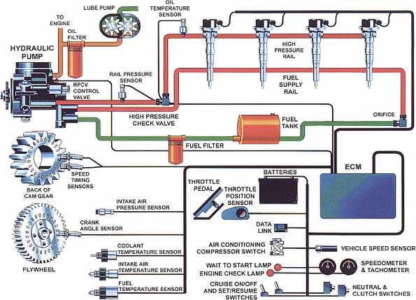 Cat C7 Fuel Injector Diagram. Parts. Wiring Diagram Images