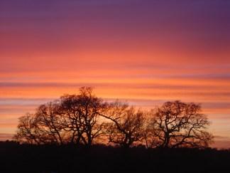 Kite Hill sunset