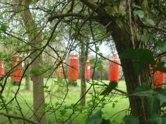 Field of wild postboxes, Newport
