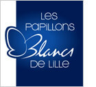 papillons blancs lille