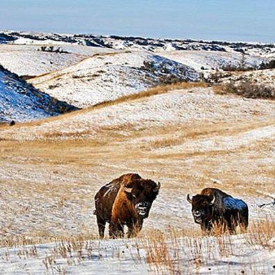 9-top-rated-tourist-attractions-in-north-dakota