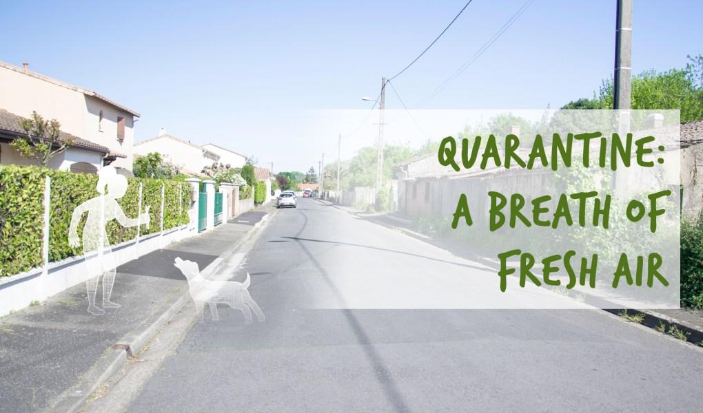 quarantine: a breath of fresh air