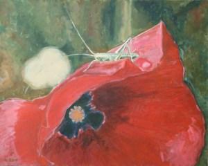 """oil on canvas """"sauterelle et coquelicot"""""""