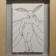 J. Moth