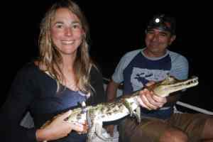 Crocodile Amazonie