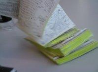 Yoriko's Diary
