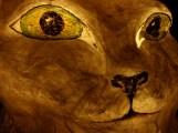 chat papier de soie