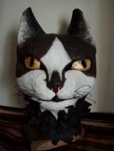chat noir et blanc à moustache