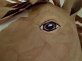 oeil cheval kraft