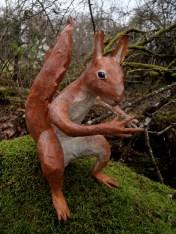écureuil assis