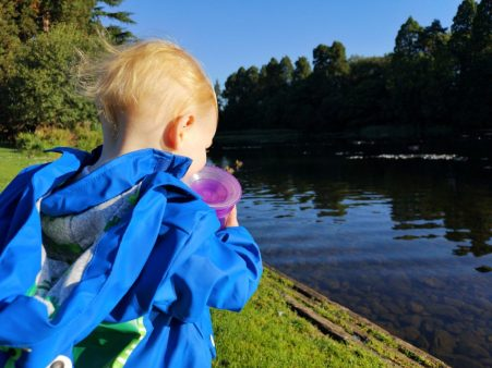 my daughter getting a little bit close to the edge of the lake at Tredegar house park