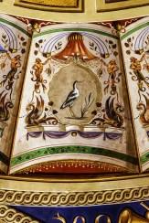 Avocetta (Recurvirostra avosetta). Foto di Sergio Ceccotti.