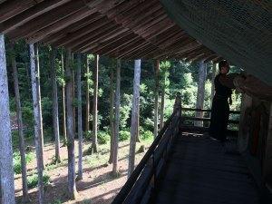 鳳仙寺山門からの眺め1