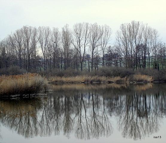 marais Lentigny, reflets