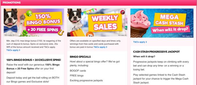 Give Back Bingo Promotions