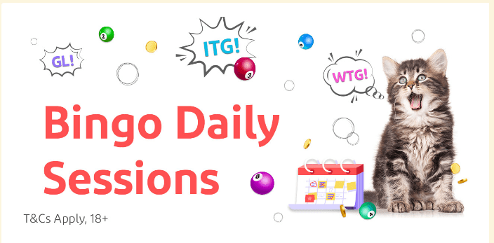 Bingo Daily Sessions
