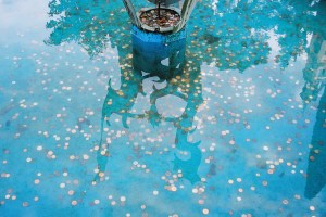 Photo by World of Oddy: Wishing Pool in Portmeirion