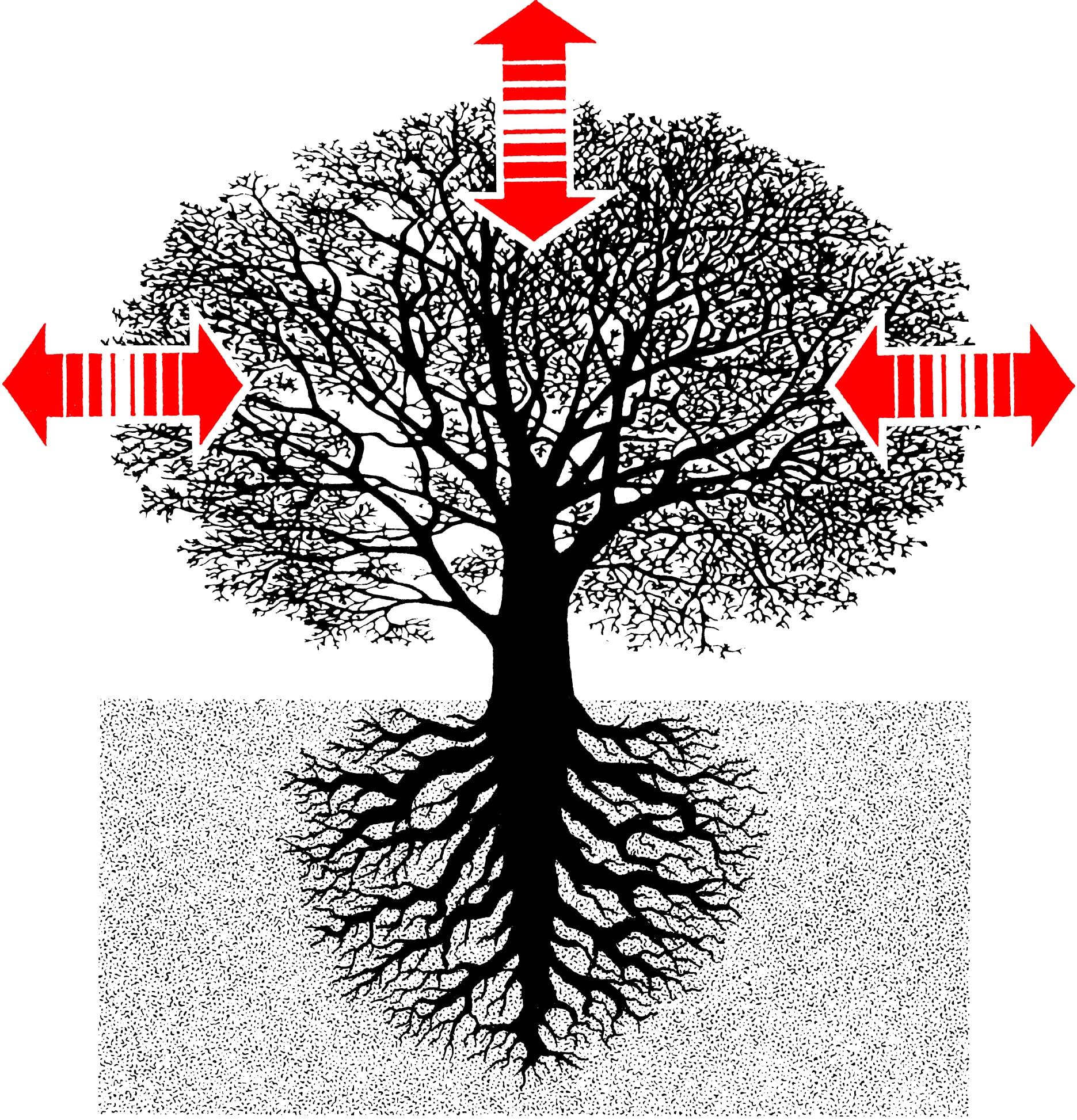 Micropile Principle
