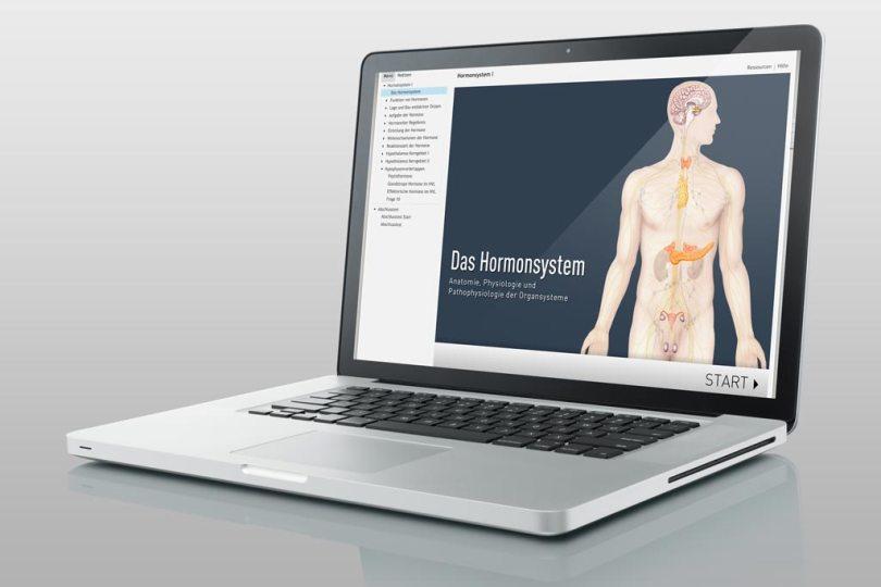 Die Hormone des menschlichen Körpers werden in diesen zwei Modulen beschrieben und anschaulich erläutert. Von der Schilddrüse bis zum Cortison, vom Adrenalin zur Hypophyse finden Sie alles aufgeführt, was im Körper mit Hormonen zu tun hat.