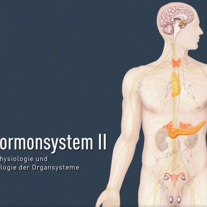 titel-hormonsystem-ii