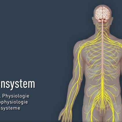titel-nervensystem