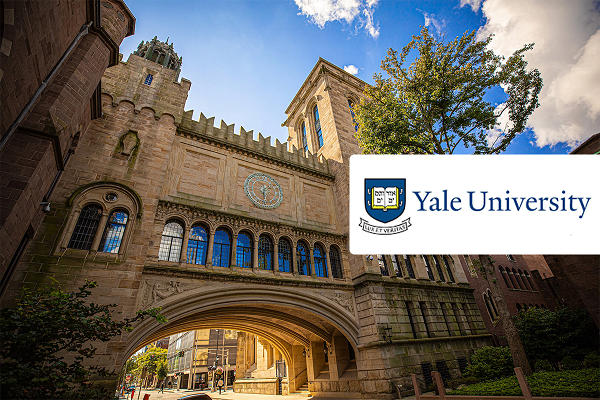 Yale university courses, fee, admissions, and more