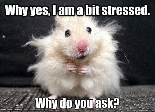 Stressed image