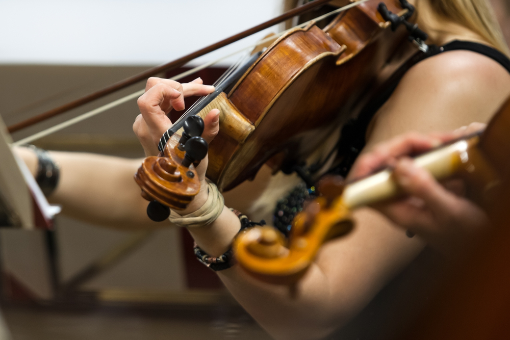 close up of person holding violin
