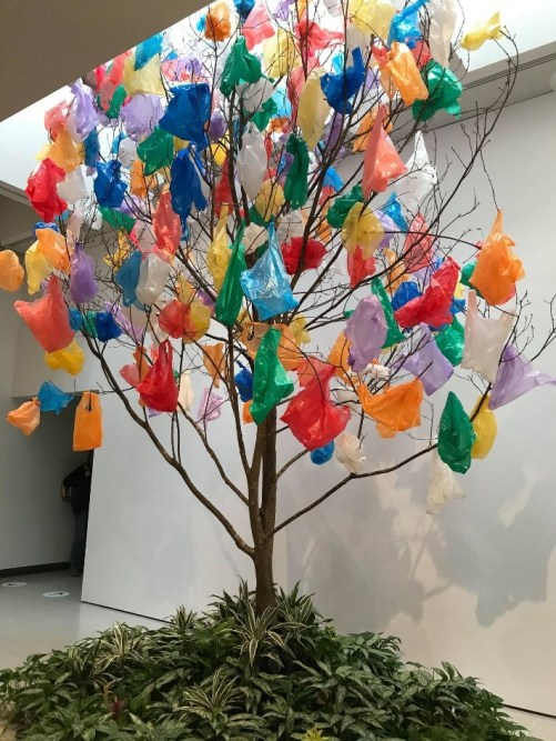art installation with plants at bottom of tree with plastic bags on top