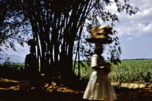Jamaica 1968 carrying basket on head