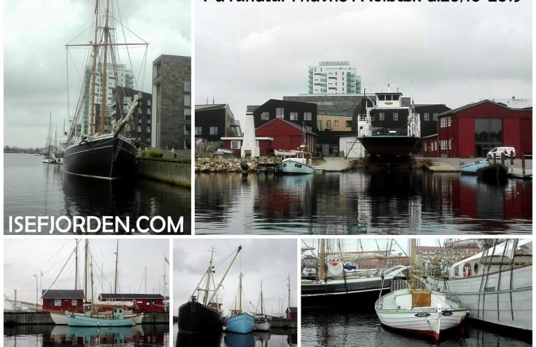 Collage med fotos fra Havnerundtur Holbæk d.20/10-2019