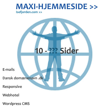 Maxi-hjemmeside 10-??? sider. Webhotel, domænenavn,emails,Wordpress installation,