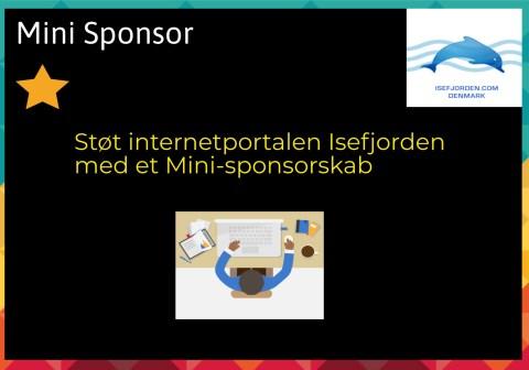 Mini sponsor