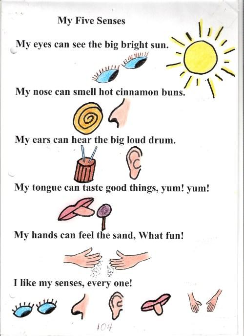small resolution of five sense worksheet